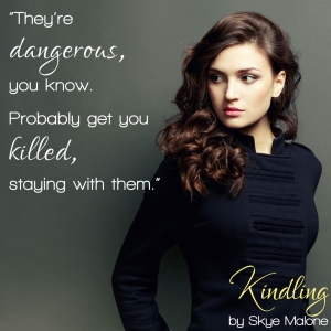They're dangerous - Kindling by Skye Malone
