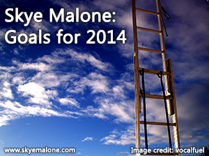 Goals for the year 2014 picture