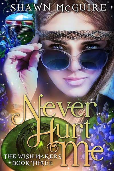 Never Hurt Me by Shawn McGuire